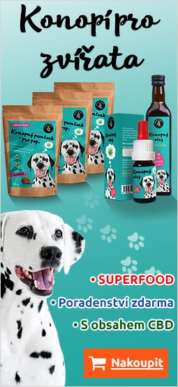 Right Banner Dog 249x395 CZ